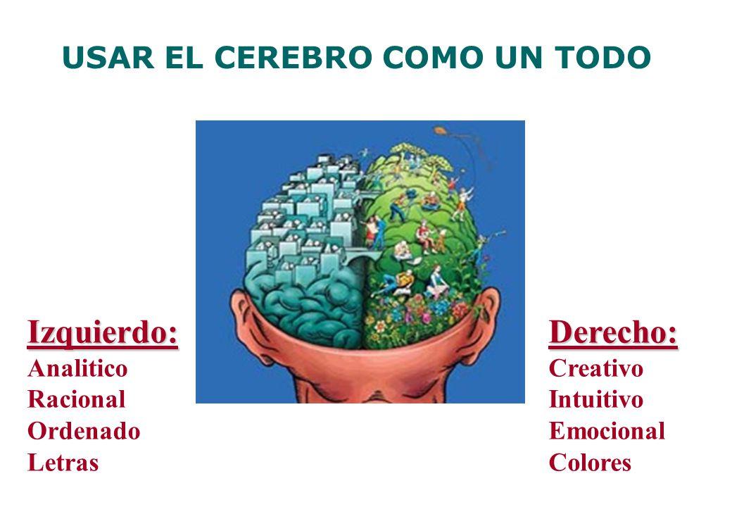Derecho: Creativo Intuitivo Emocional ColoresIzquierdo: Analitico Racional Ordenado Letras USAR EL CEREBRO COMO UN TODO
