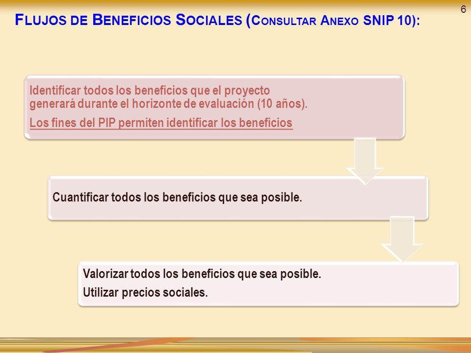 Identificar todos los beneficios que el proyecto generará durante el horizonte de evaluación (10 años). Los fines del PIP permiten identificar los ben
