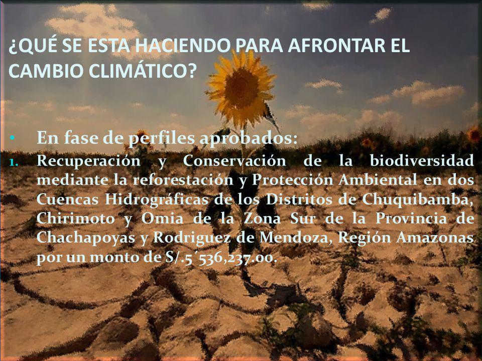 ¿QUÉ SE ESTA HACIENDO PARA AFRONTAR EL CAMBIO CLIMÁTICO? En fase de perfiles aprobados: 1. Recuperación y Conservación de la biodiversidad mediante la