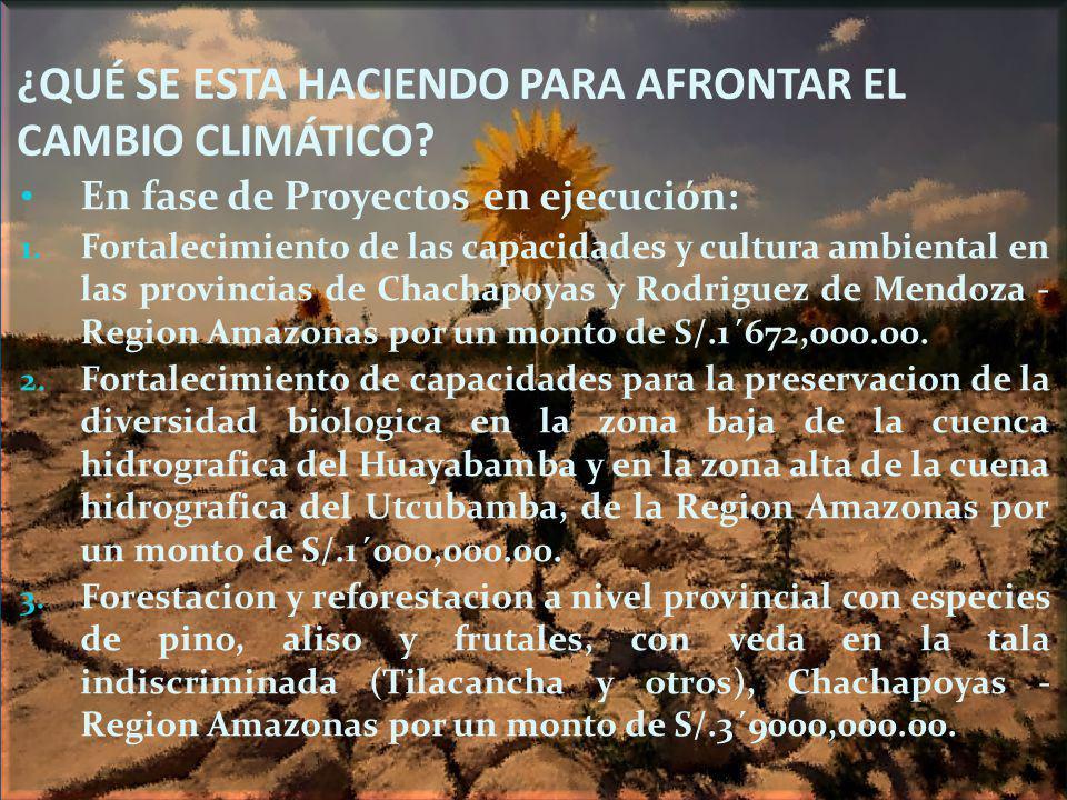 ¿QUÉ SE ESTA HACIENDO PARA AFRONTAR EL CAMBIO CLIMÁTICO? En fase de Proyectos en ejecución: 1. Fortalecimiento de las capacidades y cultura ambiental