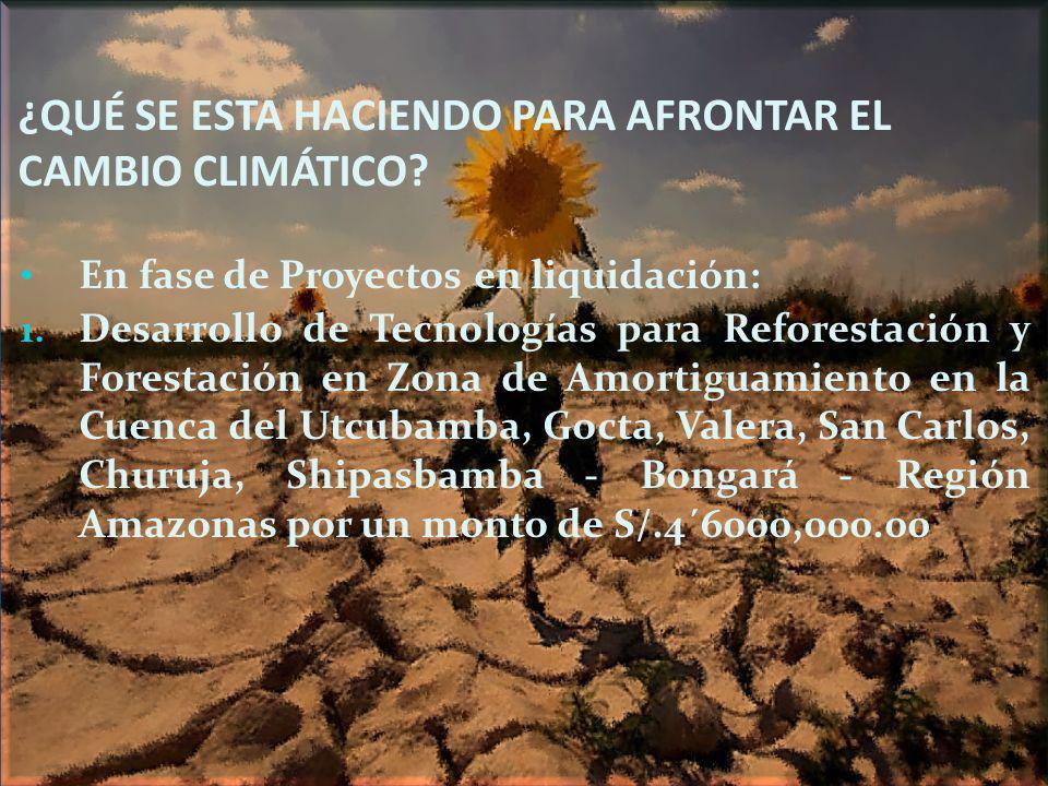 ¿QUÉ SE ESTA HACIENDO PARA AFRONTAR EL CAMBIO CLIMÁTICO? En fase de Proyectos en liquidación: 1. Desarrollo de Tecnologías para Reforestación y Forest