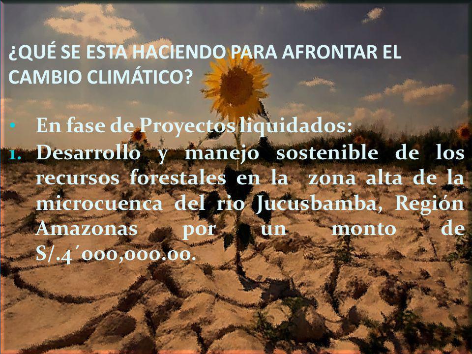 ¿QUÉ SE ESTA HACIENDO PARA AFRONTAR EL CAMBIO CLIMÁTICO? En fase de Proyectos liquidados: 1. Desarrollo y manejo sostenible de los recursos forestales
