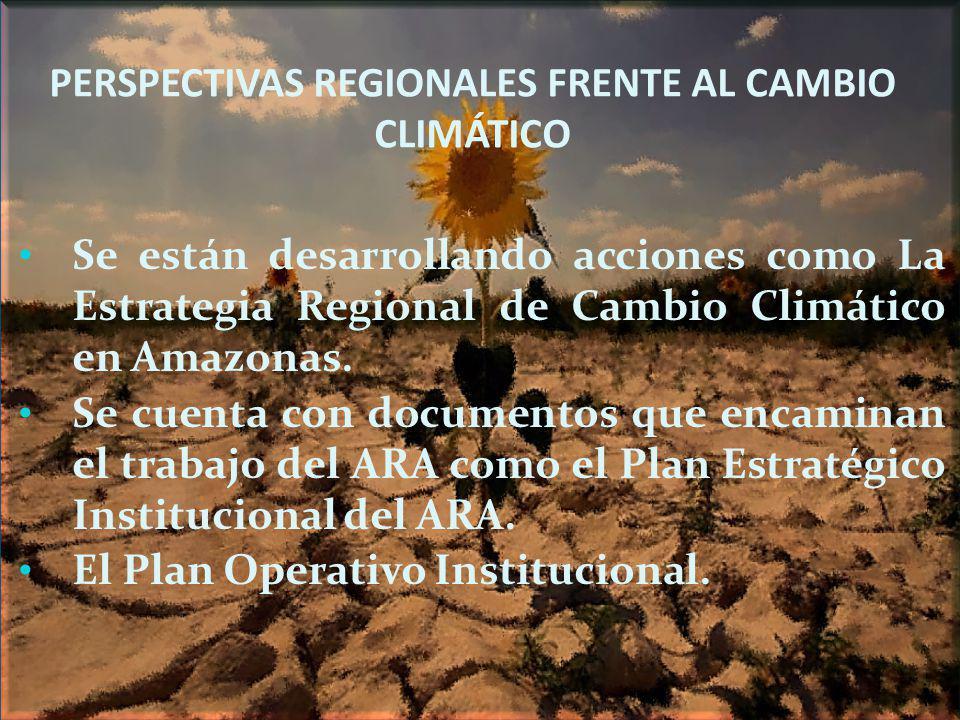 PERSPECTIVAS REGIONALES FRENTE AL CAMBIO CLIMÁTICO Se están desarrollando acciones como La Estrategia Regional de Cambio Climático en Amazonas. Se cue
