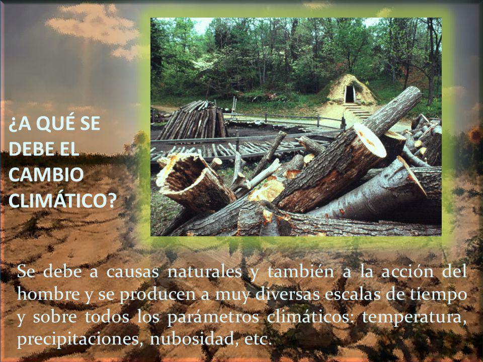 ¿A QUÉ SE DEBE EL CAMBIO CLIMÁTICO? Se debe a causas naturales y también a la acción del hombre y se producen a muy diversas escalas de tiempo y sobre