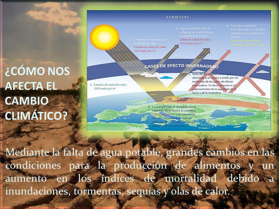 ¿CÓMO NOS AFECTA EL CAMBIO CLIMÁTICO? Mediante la falta de agua potable, grandes cambios en las condiciones para la producción de alimentos y un aumen