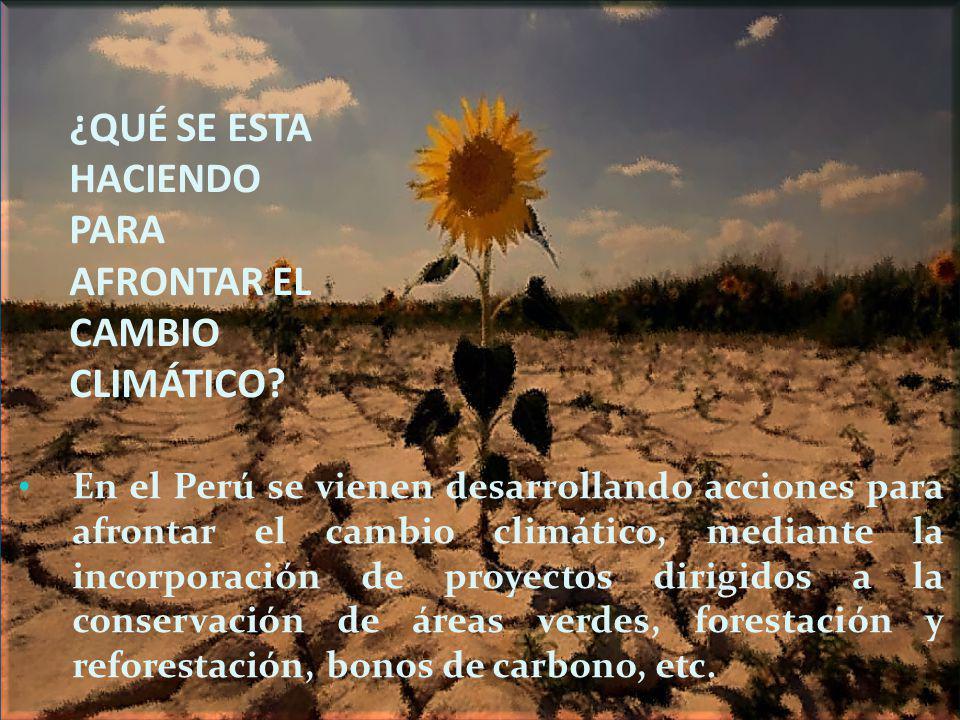 ¿QUÉ SE ESTA HACIENDO PARA AFRONTAR EL CAMBIO CLIMÁTICO? En el Perú se vienen desarrollando acciones para afrontar el cambio climático, mediante la in