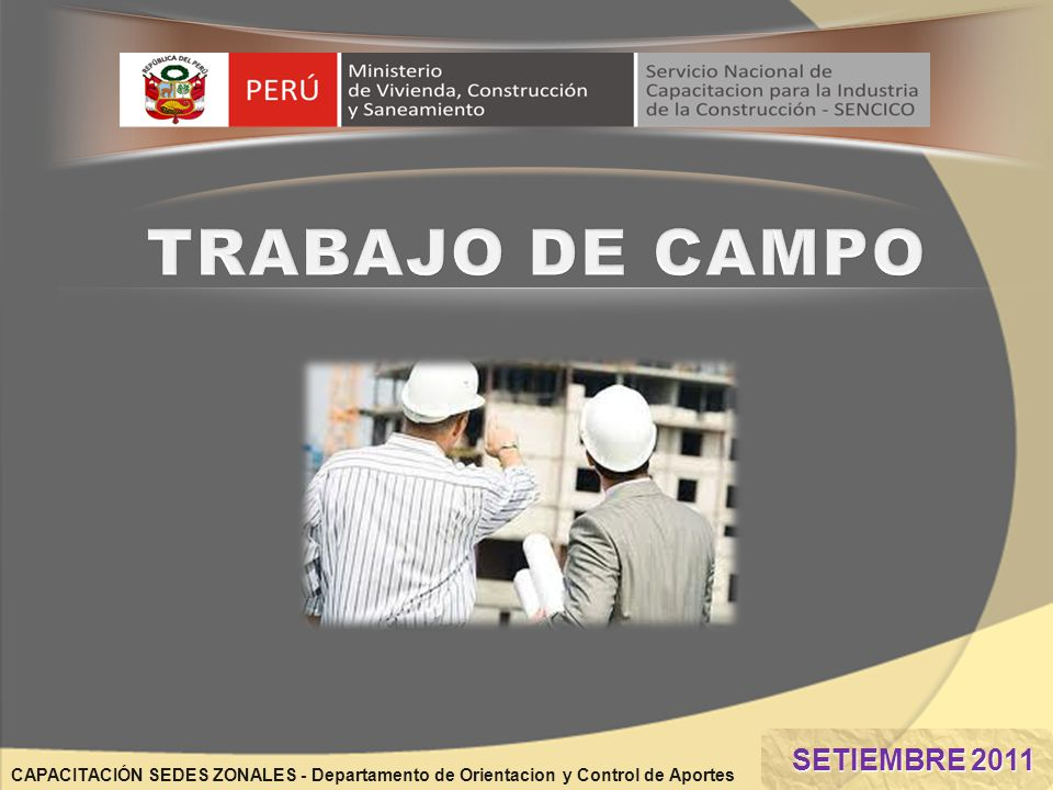 CAPACITACIÓN SEDES ZONALES - Departamento de Orientacion y Control de Aportes SETIEMBRE 2011 SETIEMBRE 2011