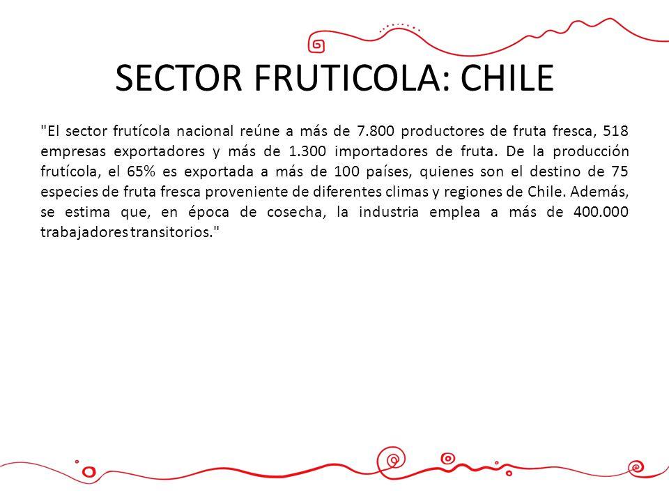 SECTOR FRUTICOLA: CHILE