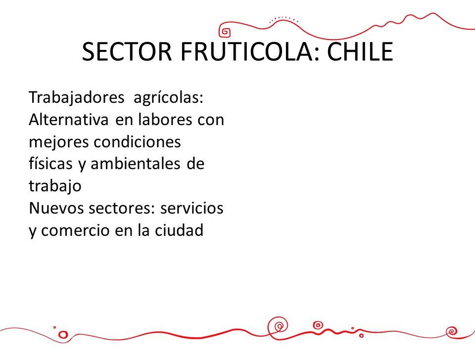 SECTOR FRUTICOLA: CHILE Trabajadores agrícolas: Alternativa en labores con mejores condiciones físicas y ambientales de trabajo Nuevos sectores: servi