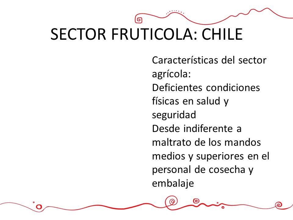SECTOR FRUTICOLA: CHILE Características del sector agrícola: Deficientes condiciones físicas en salud y seguridad Desde indiferente a maltrato de los