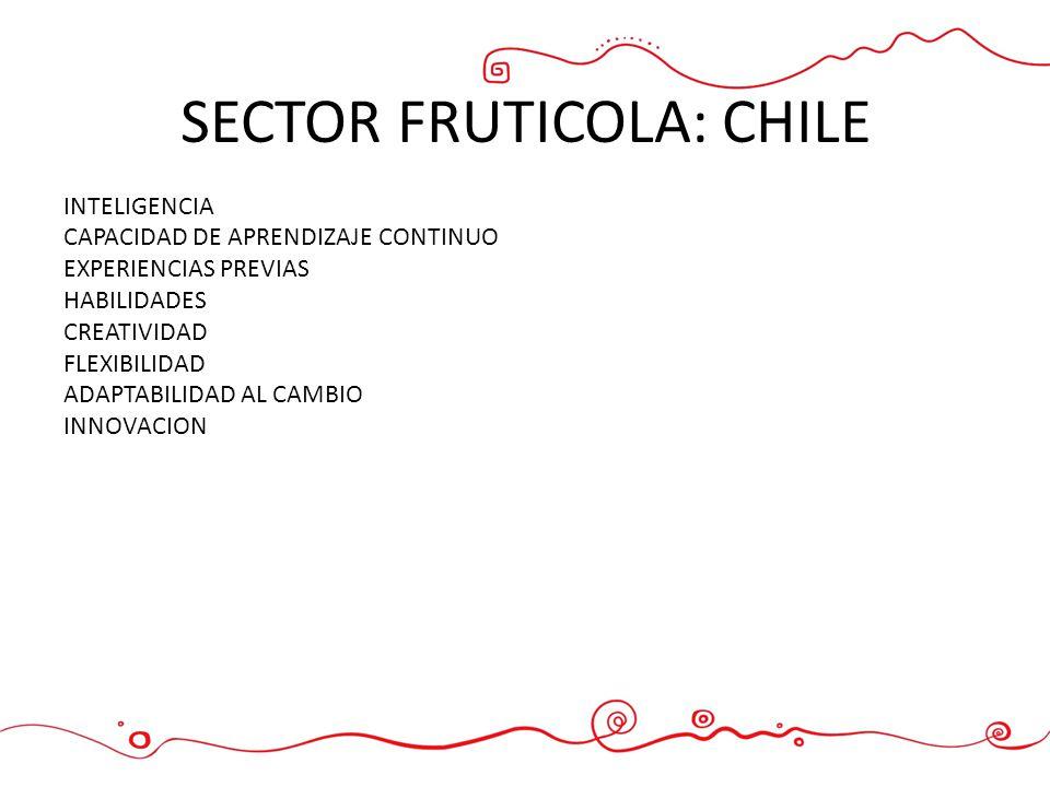 SECTOR FRUTICOLA: CHILE INTELIGENCIA CAPACIDAD DE APRENDIZAJE CONTINUO EXPERIENCIAS PREVIAS HABILIDADES CREATIVIDAD FLEXIBILIDAD ADAPTABILIDAD AL CAMB