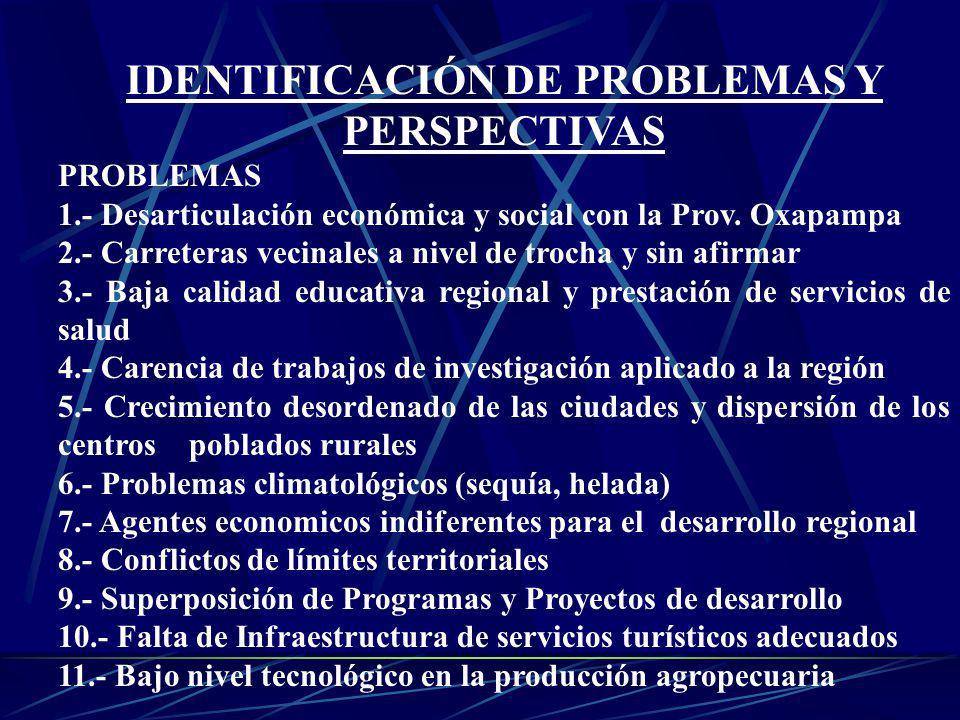 IDENTIFICACIÓN DE PROBLEMAS Y PERSPECTIVAS PROBLEMAS 1.- Desarticulación económica y social con la Prov. Oxapampa 2.- Carreteras vecinales a nivel de