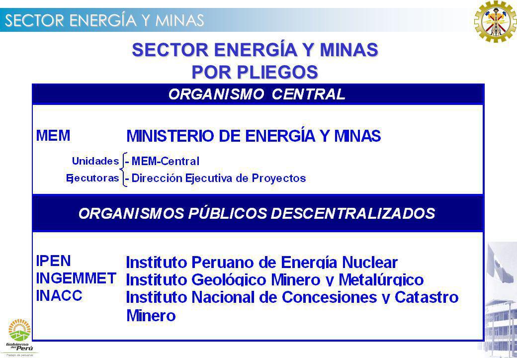 SECTOR ENERGÍA Y MINAS Instituto Nacional de Concesiones y Catastro Minero Metas a alcanzar en el 2005 Terminar el Sistema Minero totalmente automatizado, culminando al 100% la incorporación de los Derechos Mineros pendientes.