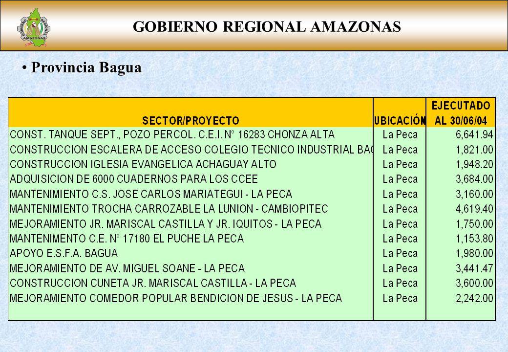 GOBIERNO REGIONAL AMAZONAS Provincia Bagua Provincia Bagua