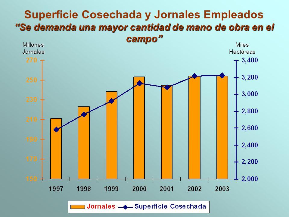 Superficie Cosechada y Jornales Empleados Se demanda una mayor cantidad de mano de obra en el campo MillonesJornalesMilesHectáreas