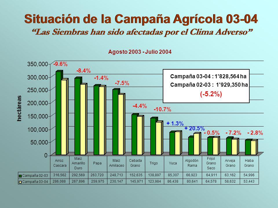 Situación de la Campaña Agrícola 03-04 Las Siembras han sido afectadas por el Clima Adverso Situación de la Campaña Agrícola 03-04 Las Siembras han si