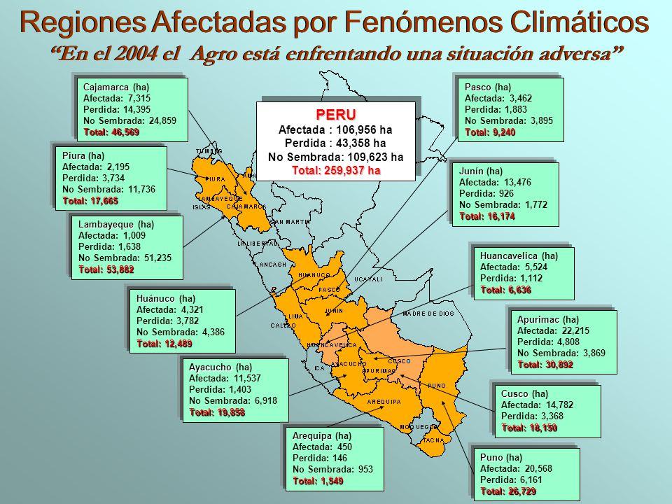 PERU Afectada : 106,956 ha Perdida : 43,358 ha No Sembrada: 109,623 ha Total: 259,937 ha PERU Afectada : 106,956 ha Perdida : 43,358 ha No Sembrada: 1