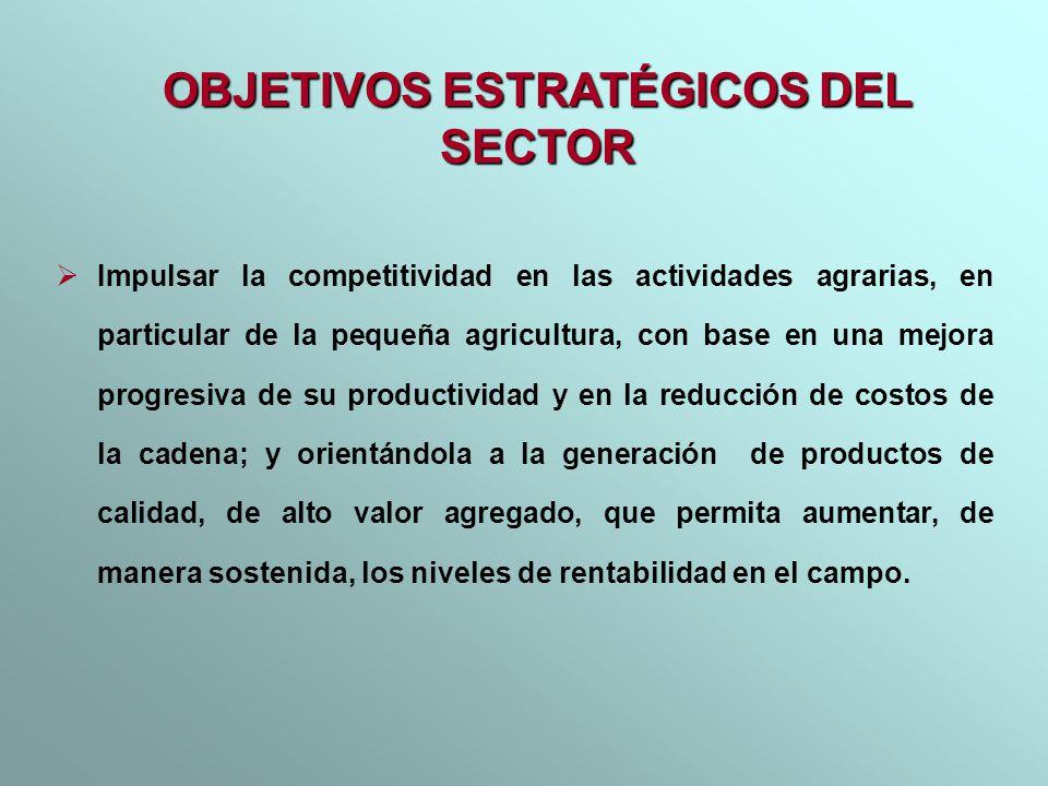 Impulsar la competitividad en las actividades agrarias, en particular de la pequeña agricultura, con base en una mejora progresiva de su productividad