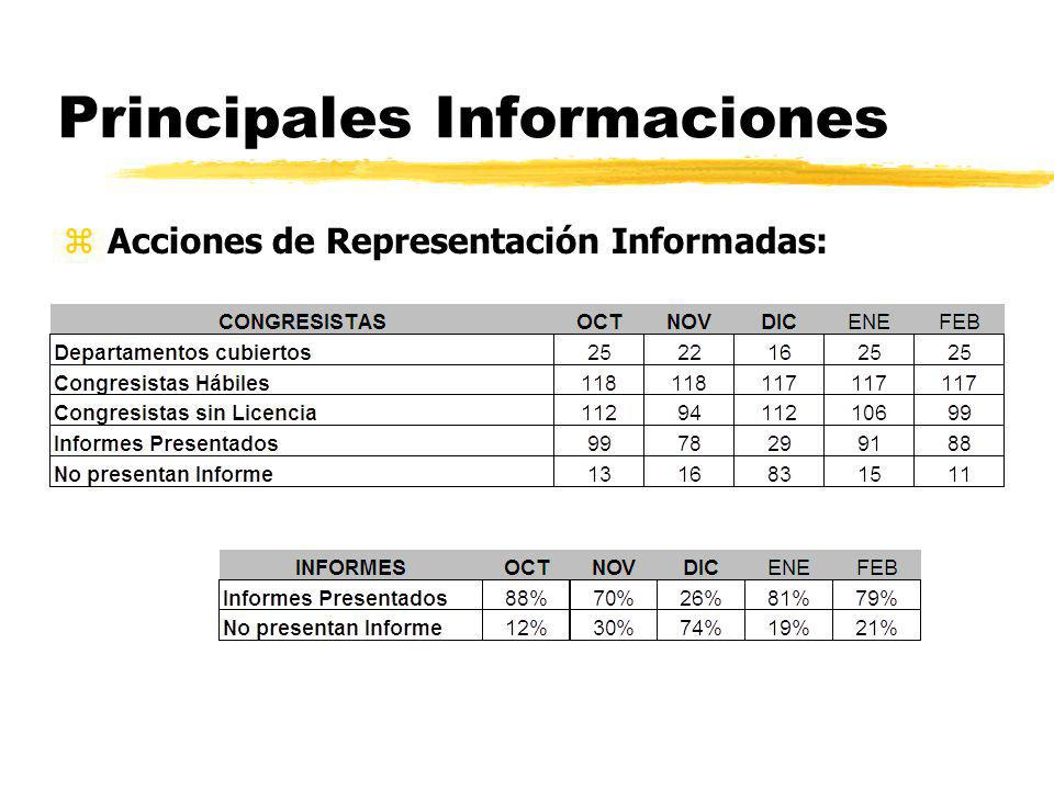 Principales Informaciones zAcciones de Representación Informadas: