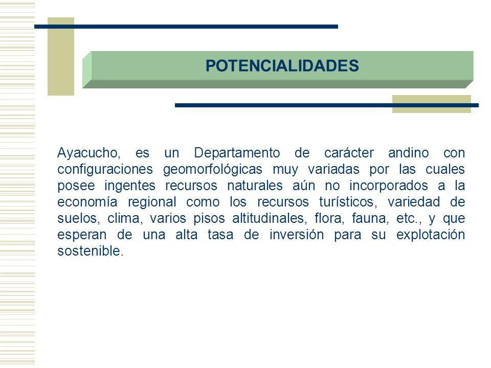 POTENCIALIDADES Ayacucho, es un Departamento de carácter andino con configuraciones geomorfológicas muy variadas por las cuales posee ingentes recurso