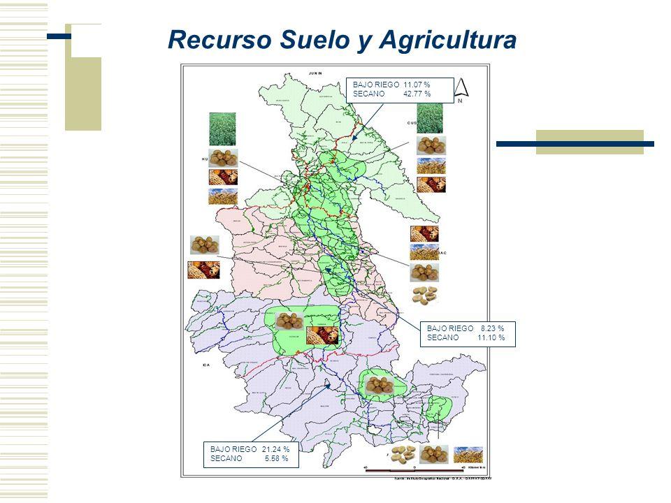 Recurso Suelo y Agricultura BAJO RIEGO 11.07 % SECANO 42.77 % BAJO RIEGO 8.23 % SECANO 11.10 % BAJO RIEGO 21.24 % SECANO 5.58 %