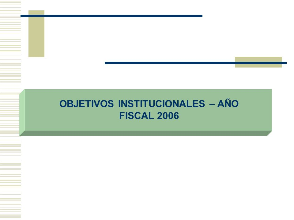 OBJETIVOS INSTITUCIONALES – AÑO FISCAL 2006