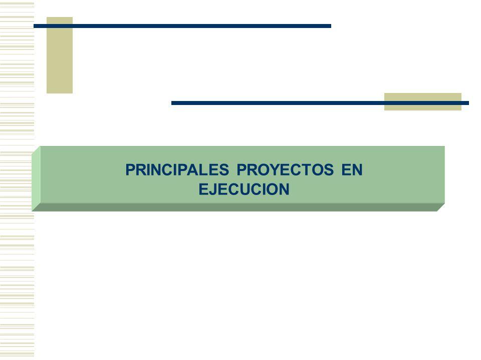 PRINCIPALES PROYECTOS EN EJECUCION