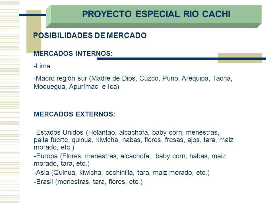 POSIBILIDADES DE MERCADO MERCADOS EXTERNOS: -Estados Unidos (Holantao, alcachofa, baby corn, menestras, palta fuerte, quinua, kiwicha, habas, flores,