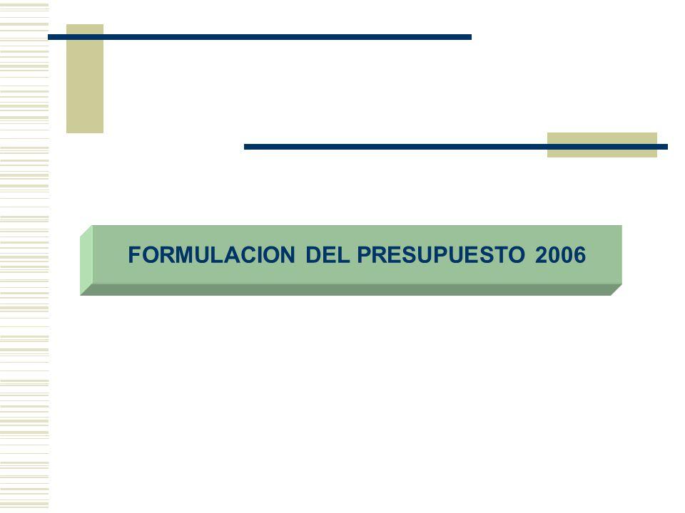 FORMULACION DEL PRESUPUESTO 2006