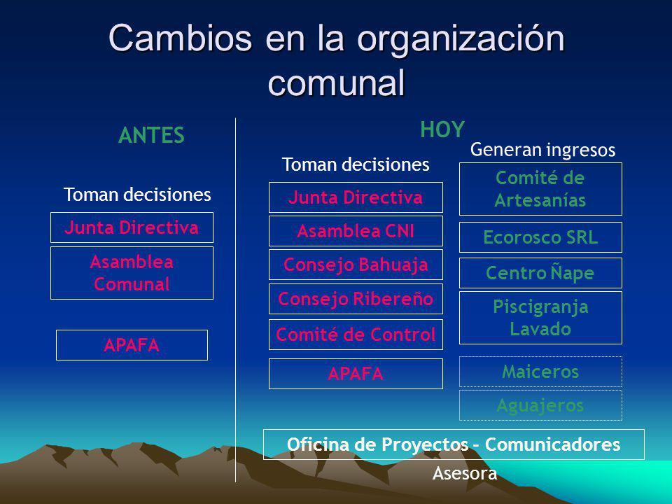 Cambios en la organización comunal Junta Directiva APAFA Ecorosco SRL Comité de Artesanías Consejo Bahuaja Comité de Control ANTES HOY Junta Directiva