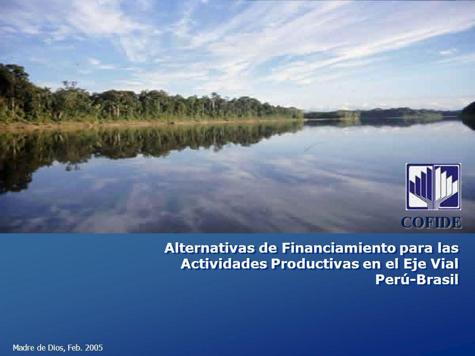 Madre de Dios, Feb. 2005 Alternativas de Financiamiento para las Actividades Productivas en el Eje Vial Perú-Brasil COFIDE