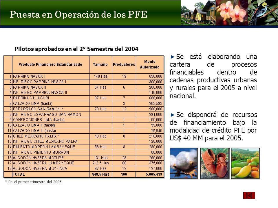 Puesta en Operación de los PFE Pilotos aprobados en el 2° Semestre del 2004 Se está elaborando una cartera de procesos financiables dentro de cadenas