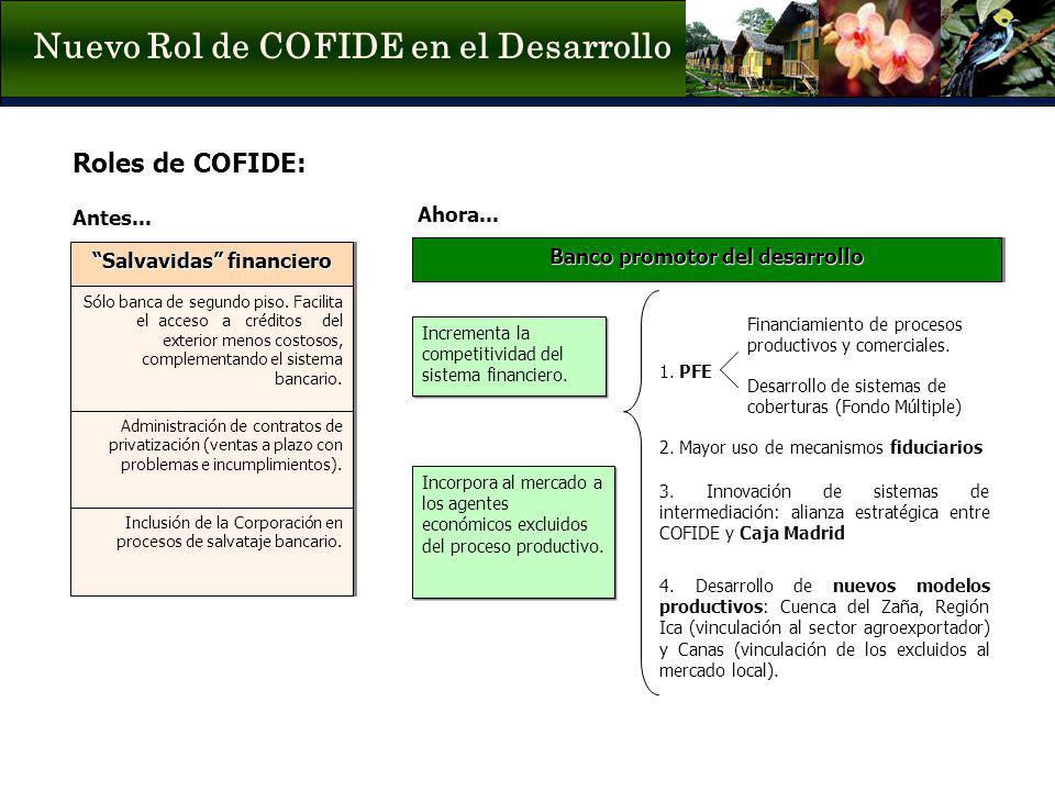 Nuevo Rol de COFIDE en el Desarrollo Inclusión de la Corporación en procesos de salvataje bancario. Administración de contratos de privatización (vent