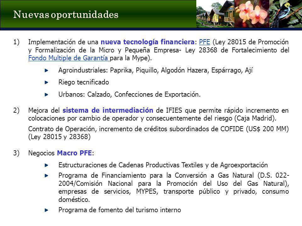 1)Implementación de una nueva tecnología financiera: PFE (Ley 28015 de Promoción y Formalización de la Micro y Pequeña Empresa- Ley 28368 de Fortaleci