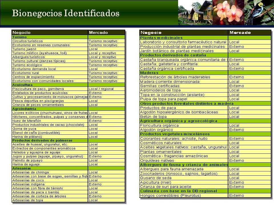 Bionegocios Identificados