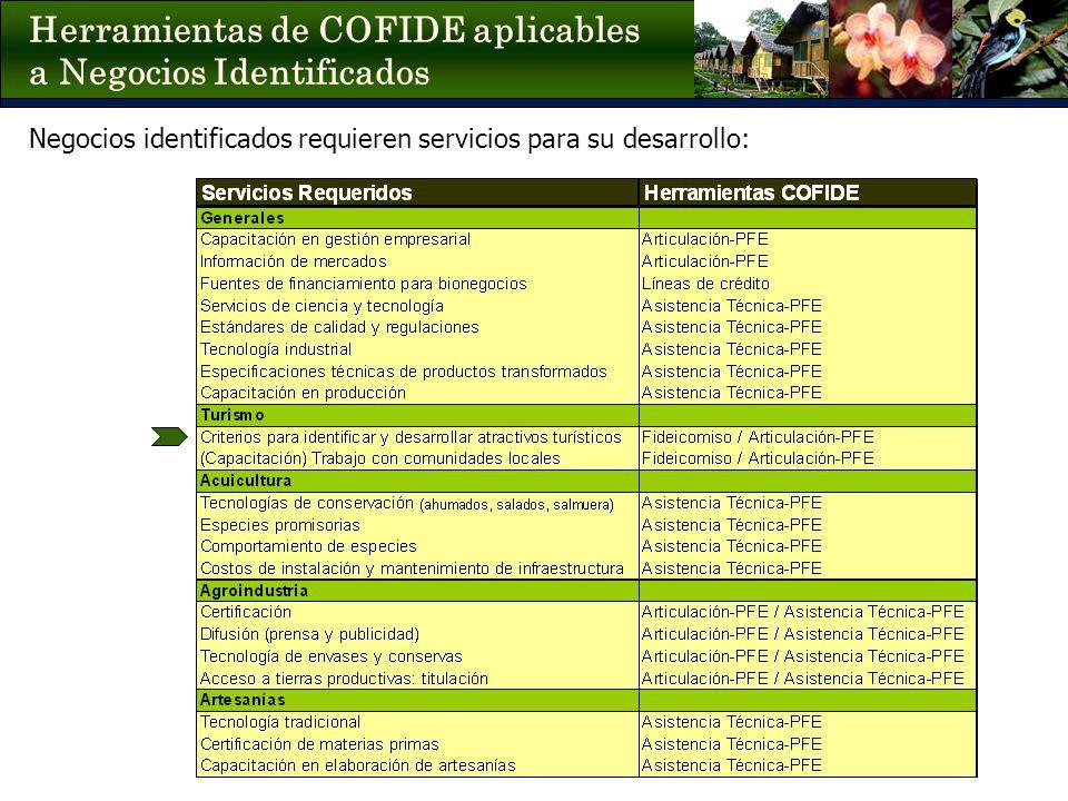 Negocios identificados requieren servicios para su desarrollo: Herramientas de COFIDE aplicables a Negocios Identificados