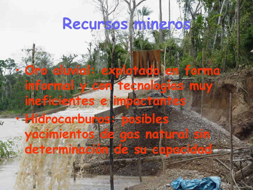 Recursos mineros Oro aluvial: explotado en forma informal y con tecnologías muy ineficientes e impactantes Hidrocarburos: posibles yacimientos de gas natural sin determinación de su capacidad