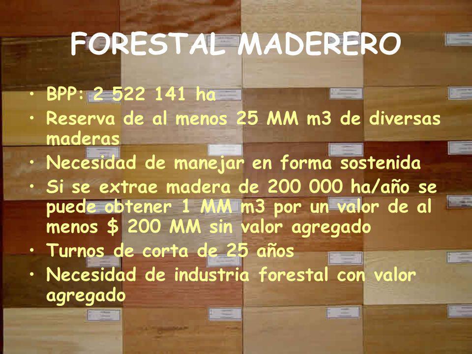FORESTAL MADERERO BPP: 2 522 141 ha Reserva de al menos 25 MM m3 de diversas maderas Necesidad de manejar en forma sostenida Si se extrae madera de 200 000 ha/año se puede obtener 1 MM m3 por un valor de al menos $ 200 MM sin valor agregado Turnos de corta de 25 años Necesidad de industria forestal con valor agregado