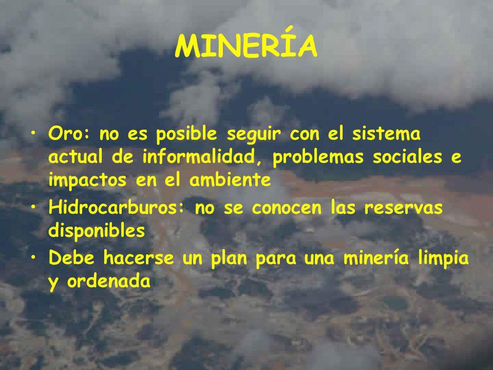 MINERÍA Oro: no es posible seguir con el sistema actual de informalidad, problemas sociales e impactos en el ambiente Hidrocarburos: no se conocen las reservas disponibles Debe hacerse un plan para una minería limpia y ordenada