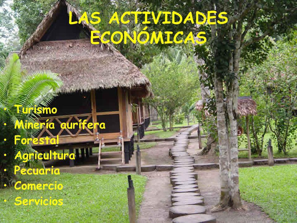 LAS ACTIVIDADES ECONÓMICAS Turismo Minería aurífera Forestal Agricultura Pecuaria Comercio Servicios
