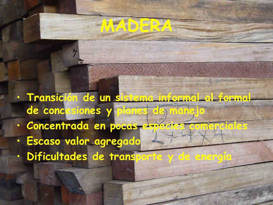 MADERA Transición de un sistema informal al formal de concesiones y planes de manejo Concentrada en pocas especies comerciales Escaso valor agregado Dificultades de transporte y de energía