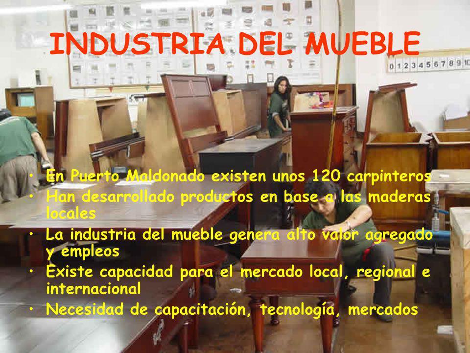 INDUSTRIA DEL MUEBLE En Puerto Maldonado existen unos 120 carpinteros Han desarrollado productos en base a las maderas locales La industria del mueble genera alto valor agregado y empleos Existe capacidad para el mercado local, regional e internacional Necesidad de capacitación, tecnología, mercados