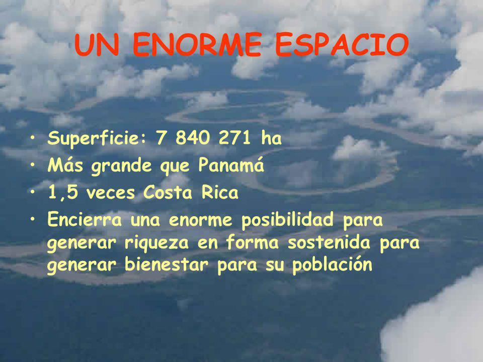 ECOTURISMO Estratégica conexión con el circuito turístico del Sur del Perú (Cusco) Turismo de bosques tropicales y biodiversidad Actividad en desarrollo muy interesante con al menos 30 albergues Experiencias de empresas de primera categoría mundial en ecoturismo de bosques tropicales