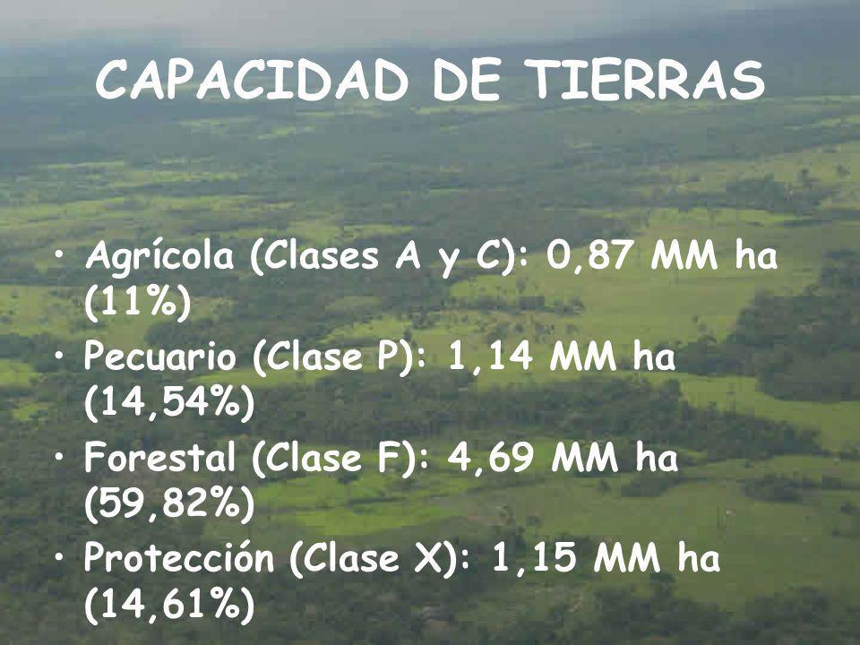 CAPACIDAD DE TIERRAS Agrícola (Clases A y C): 0,87 MM ha (11%) Pecuario (Clase P): 1,14 MM ha (14,54%) Forestal (Clase F): 4,69 MM ha (59,82%) Protección (Clase X): 1,15 MM ha (14,61%)