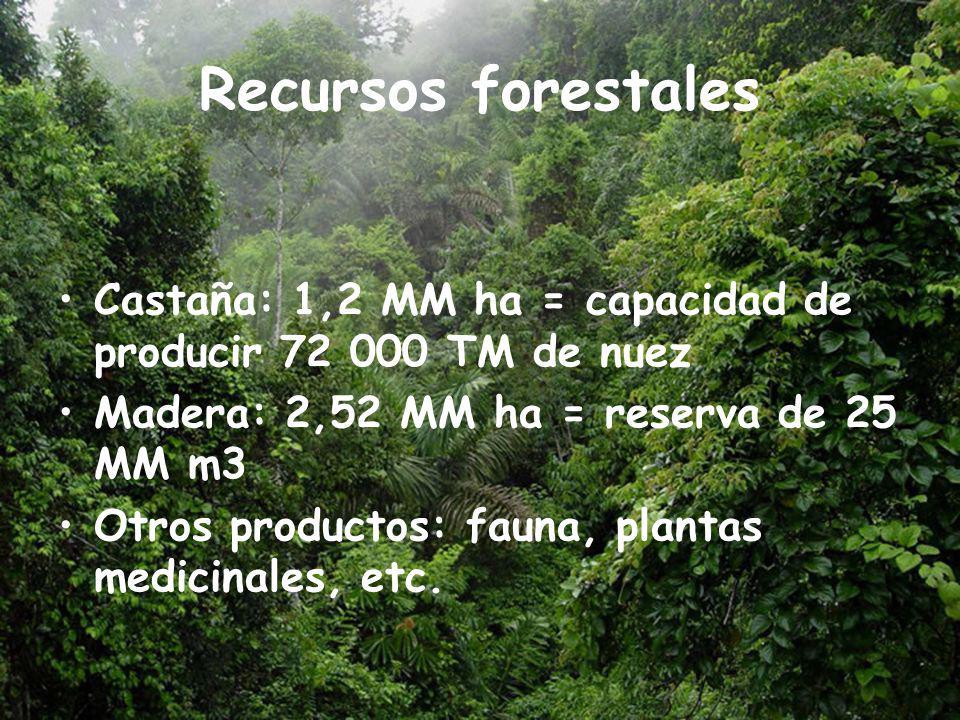 Recursos forestales Castaña: 1,2 MM ha = capacidad de producir 72 000 TM de nuez Madera: 2,52 MM ha = reserva de 25 MM m3 Otros productos: fauna, plantas medicinales, etc.