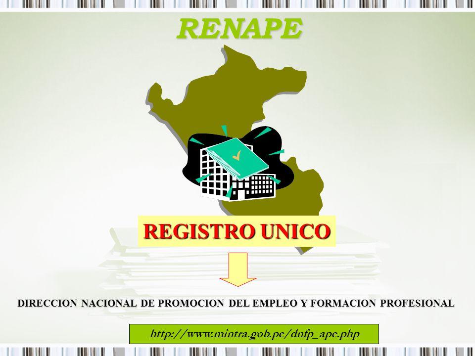 RENAPE REGISTRO UNICO DIRECCION NACIONAL DE PROMOCION DEL EMPLEO Y FORMACION PROFESIONAL http://www.mintra.gob.pe/dnfp_ape.php