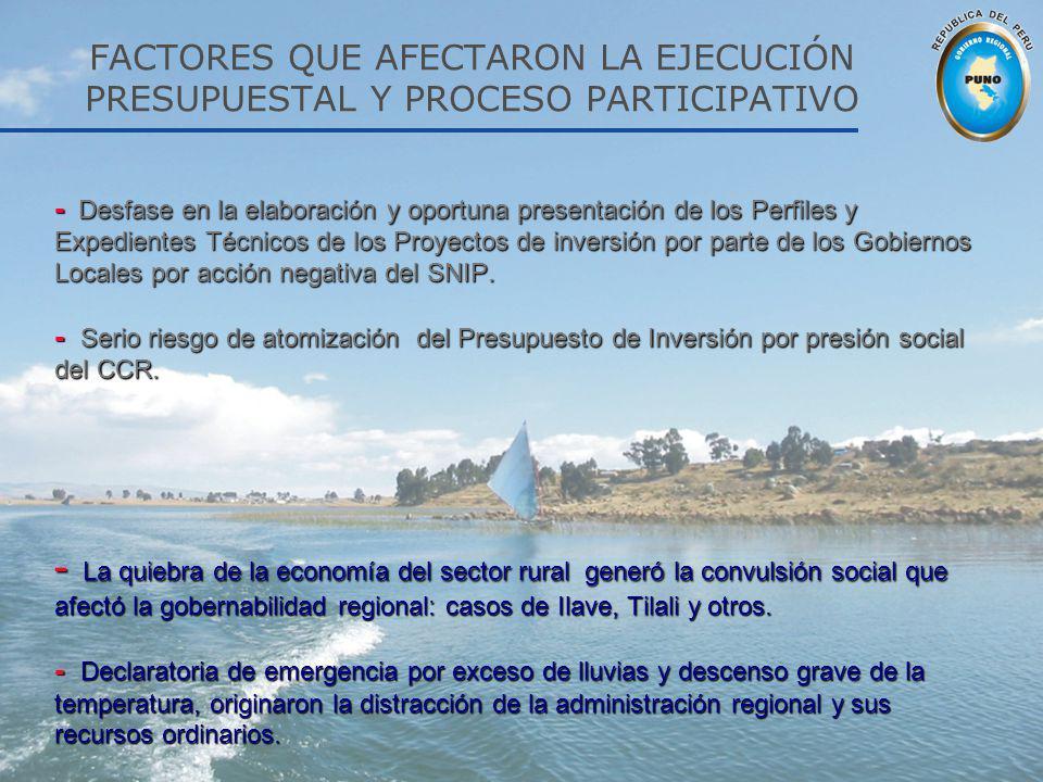 FACTORES QUE AFECTARON LA EJECUCIÓN PRESUPUESTAL Y PROCESO PARTICIPATIVO - Desfase en la elaboración y oportuna presentación de los Perfiles y Expedie