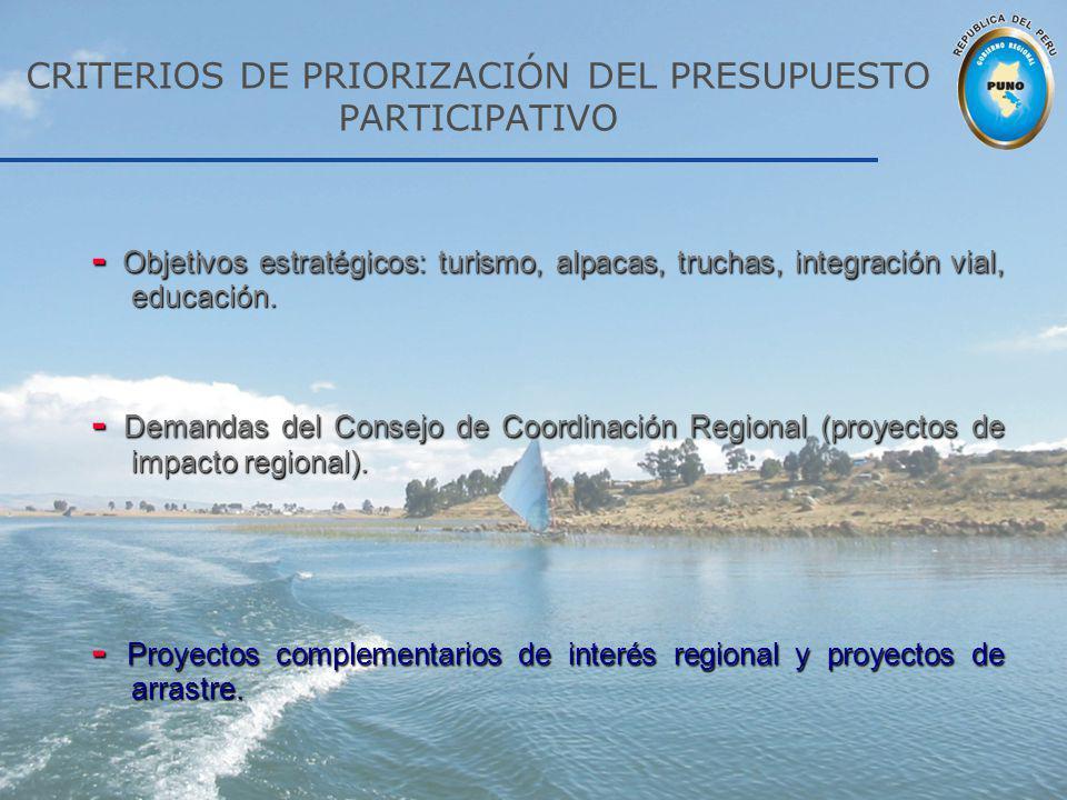CRITERIOS DE PRIORIZACIÓN DEL PRESUPUESTO PARTICIPATIVO - Objetivos estratégicos: turismo, alpacas, truchas, integración vial, educación. - Demandas d