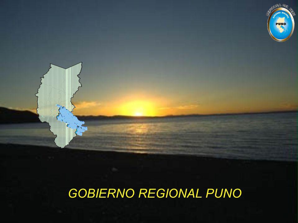 GOBIERNO REGIONAL PUNO