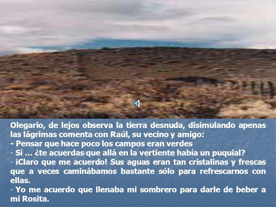 Olegario, de lejos observa la tierra desnuda, disimulando apenas las lágrimas comenta con Raúl, su vecino y amigo: - Pensar que hace poco los campos eran verdes - Sí … ¿te acuerdas que allá en la vertiente había un puquial.